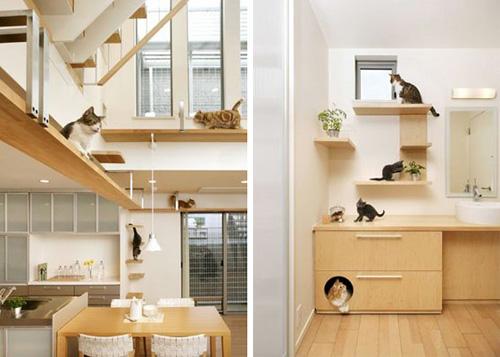 cat house plans pdf